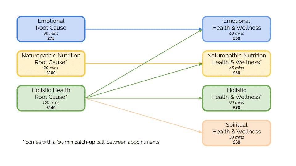 Higher Healing Consultation Structure